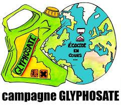 glyphosate 91